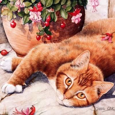 Debbie Cook. Милые котики