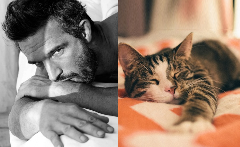 успели мужик с котенком картинка молодец