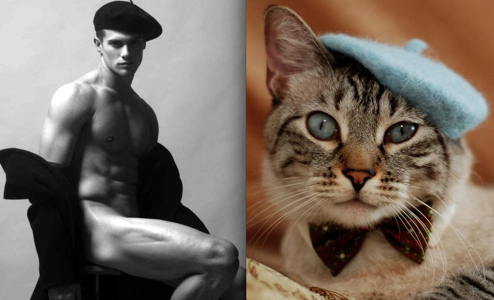 Прикольная картинка мужик с котом