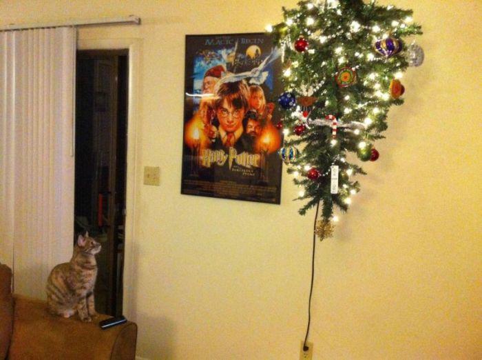 Как нарядить елку, если дома кот